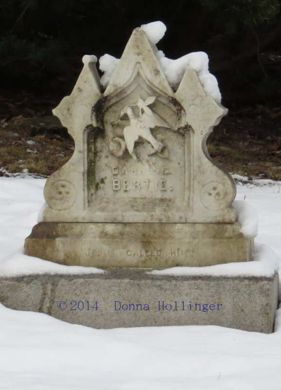 Childs Grave Marker:  Darling Bertie