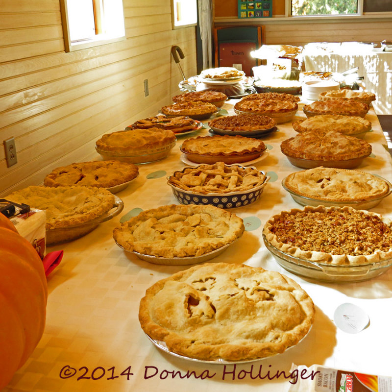 19 Pies for the Apple Pie Contest