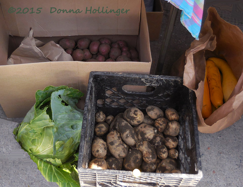 Potatoes, Cabbage and Squash
