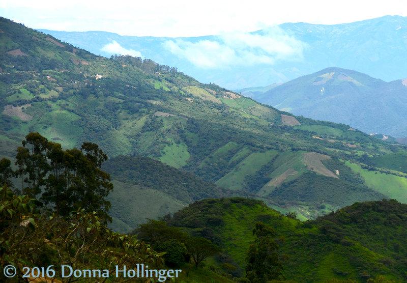 Hills Near Jorupe Riserva