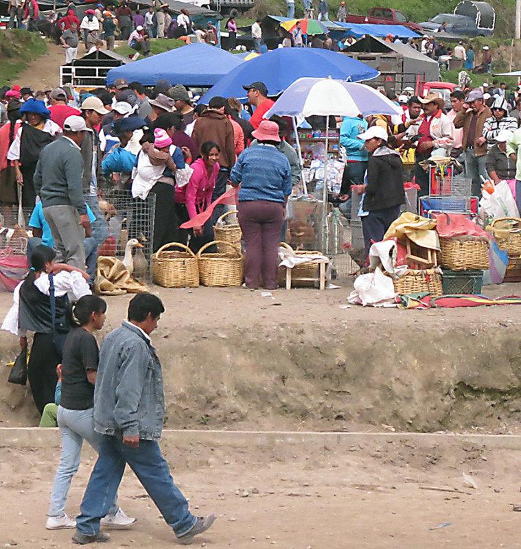 Sunday Market Gathering at Ottavalo