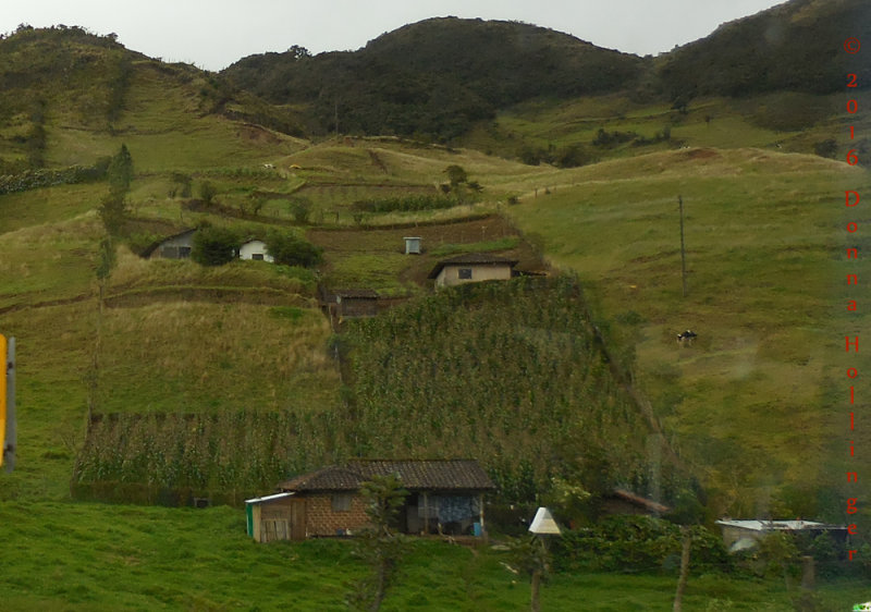 Houses in the Countryside