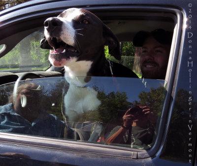 My Neighbor and His Dog Jacoby