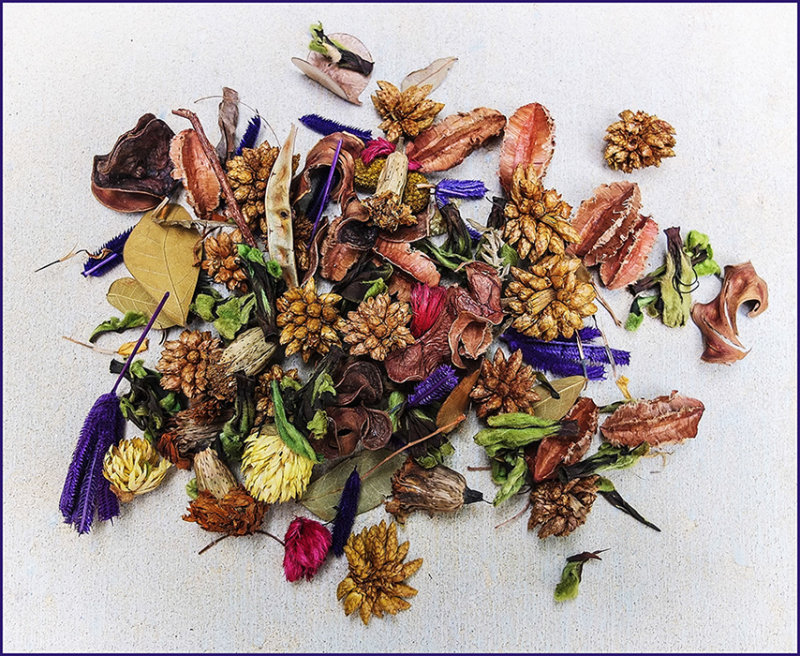 Australian Bush Pot Pourri