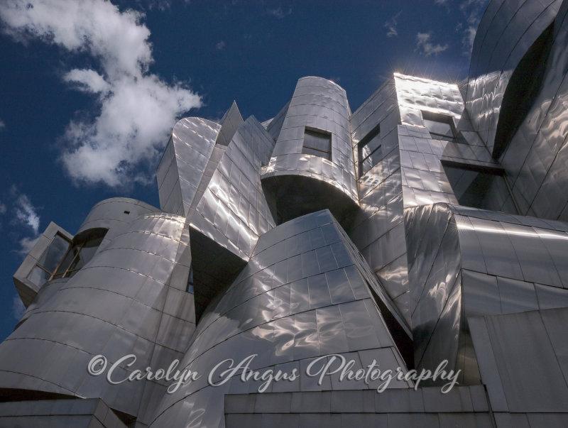 Frank_Gehry_Weisman_Museum