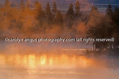 Morning_Lake_Mists5292.jpg