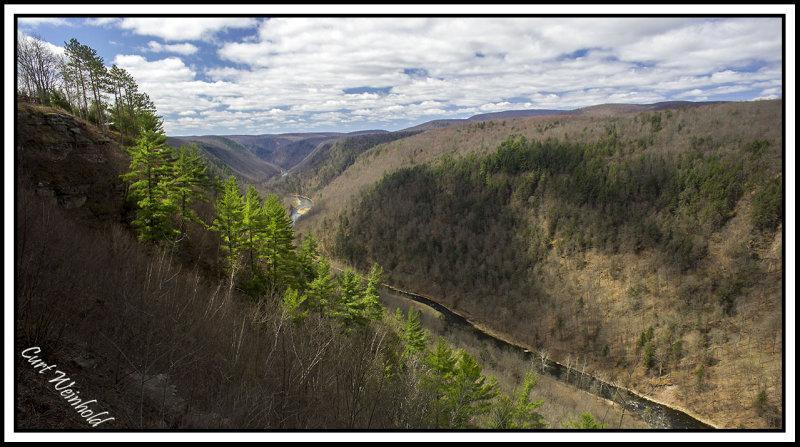 Pine Creek Gorge at Leonard Harrison State Park