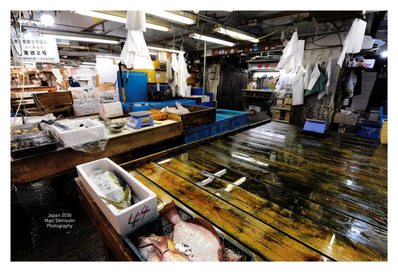 Tsukiji Fish Market - Tokyo 19