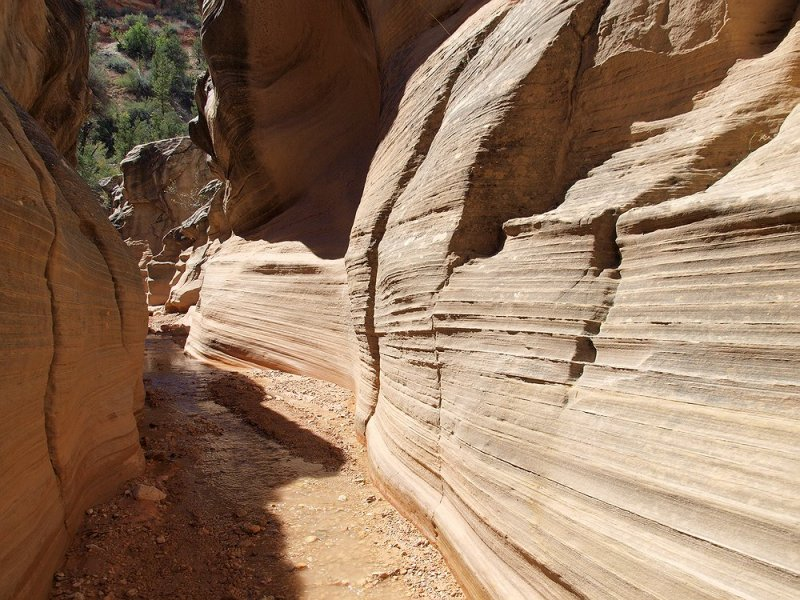 LB158313 trail _slot canyon walls.jpg