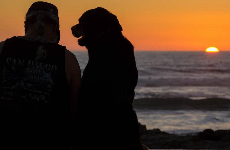 Beach mates, Imperial Beach, California, 2014