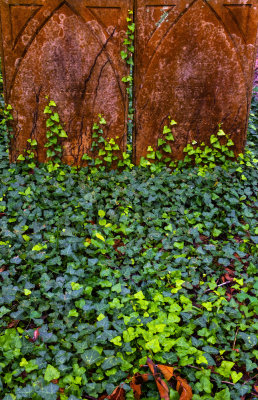 Consumed by nature, St. Philips Graveyard, Charleston, South Carolina, 2013