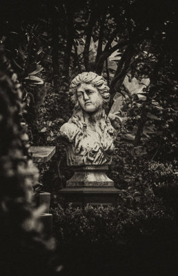 The Garden, Charleston, South Carolina, 2013