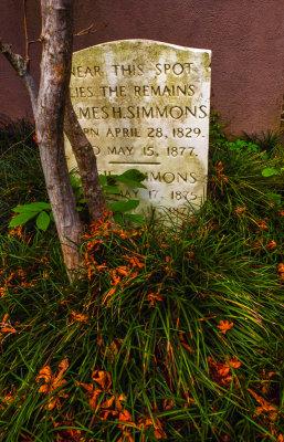 Sprouts, Graveyard of the Circular Church, Charleston, South Carolina, 2013