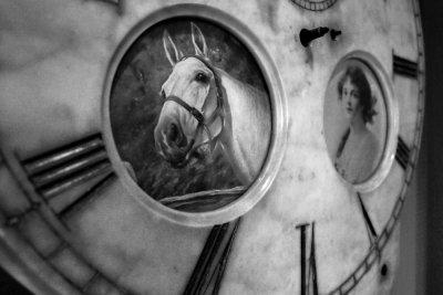 Equine time, Charleston Museum, Charleston, South Carolina, 2013