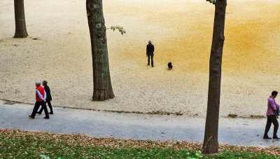 Opposite paths, Central Park, New York City, New York, 2013