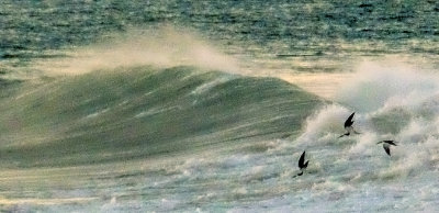 Stormy waters, Imperial Beach, California, 2014