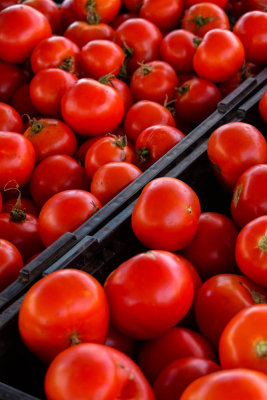 Tomatoes, Farmer's market, Imperial Beach, California, 2014