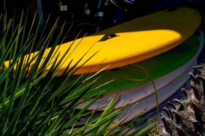 Surf sale, Imperial Beach, California, 2014