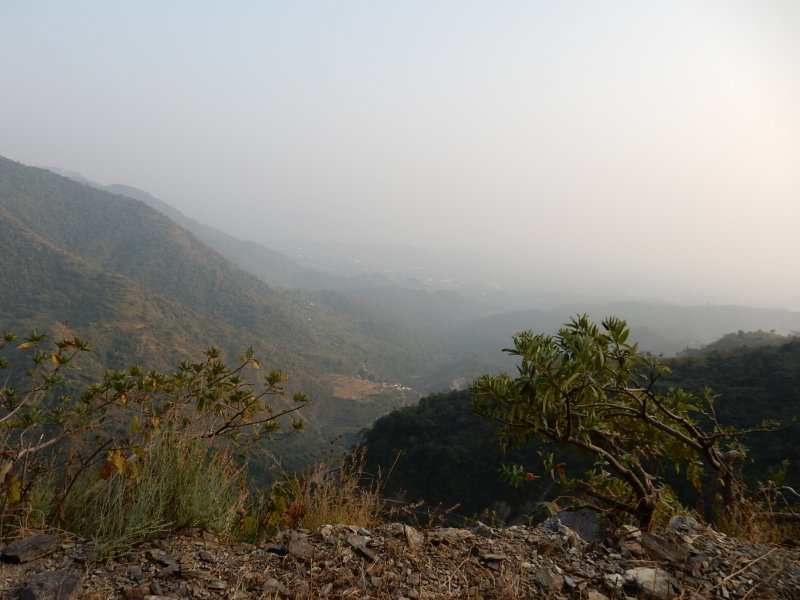 Explore the nearby hills