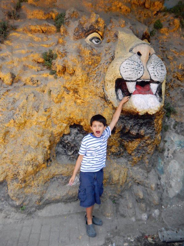 Go to Mussouri and try to put your finger in the lions nose