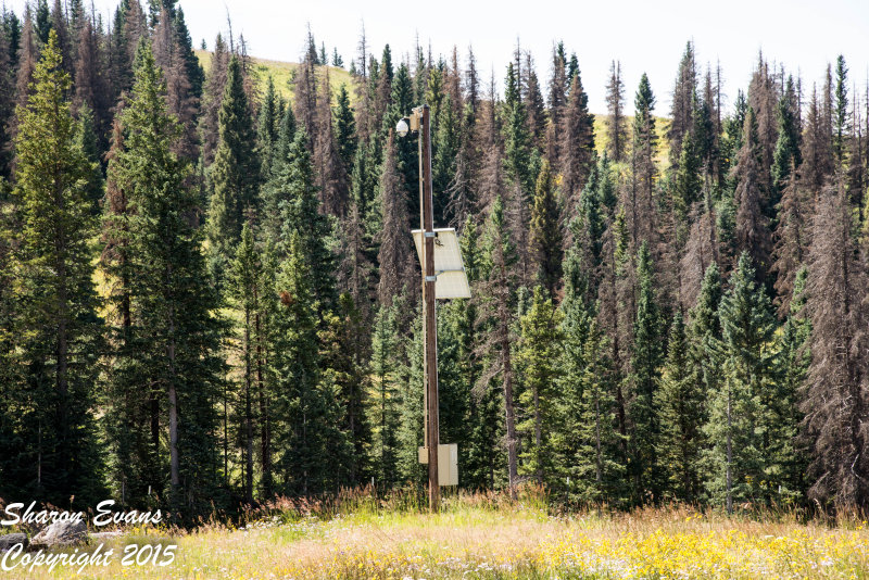 The CDot traffic camera located at Cumbres Pass
