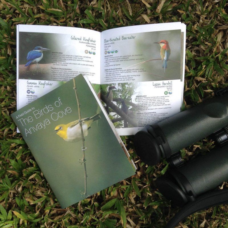 My photo on the cover of Anvaya Cove field guide.