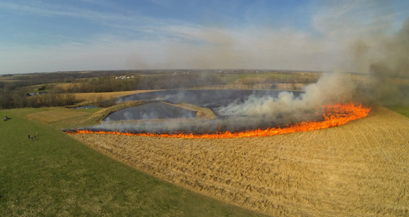 Controlled Burning at Jim Grace Farms