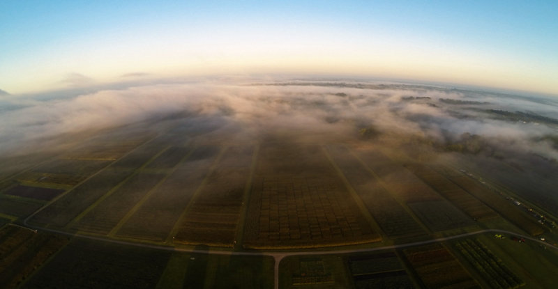 Hundley-Whaley Test Plots in Fog
