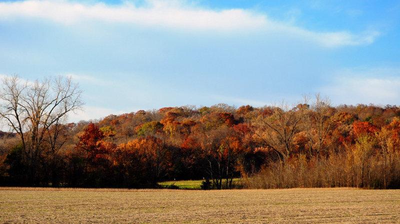 Fall Colors at Elam Bend