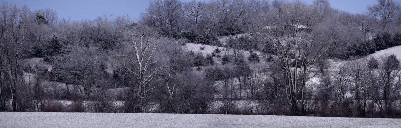 Spring Snowfall Panorama