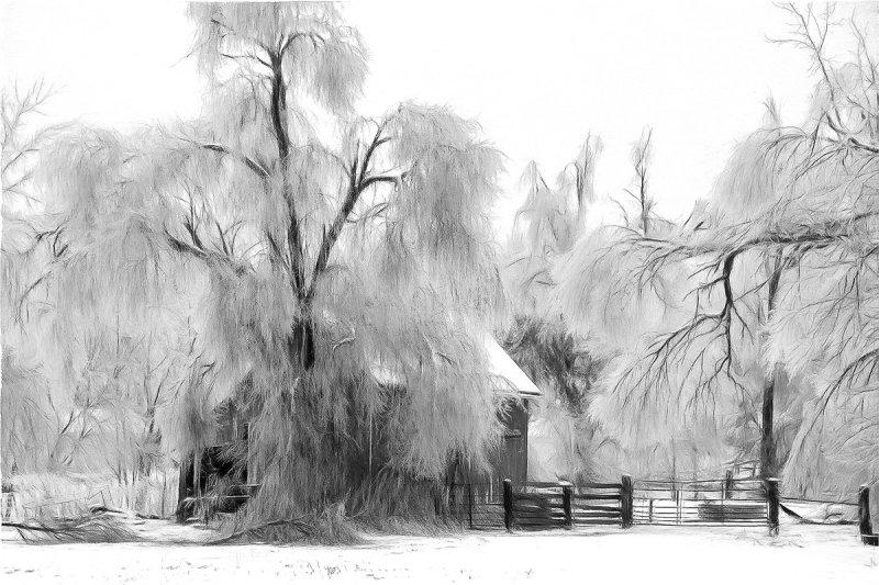 Ice Storm & Barn (B&W Impression)
