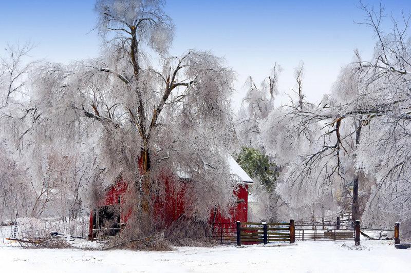Ice Storm & Barn