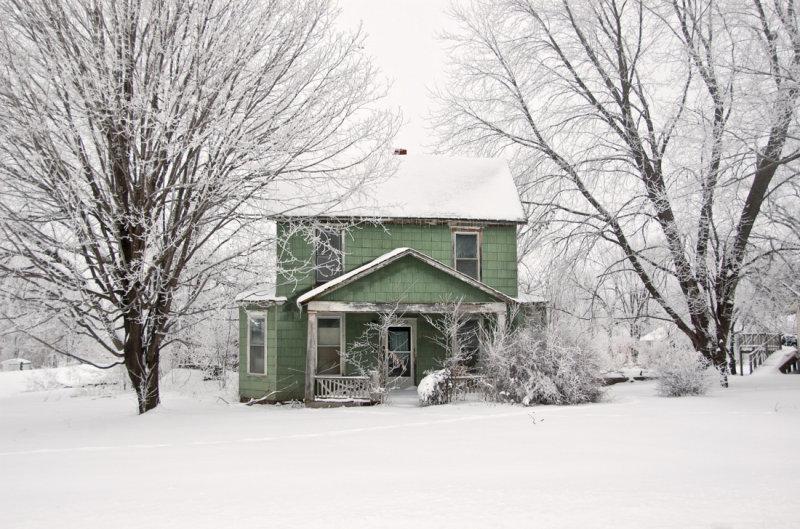 Green in Winter