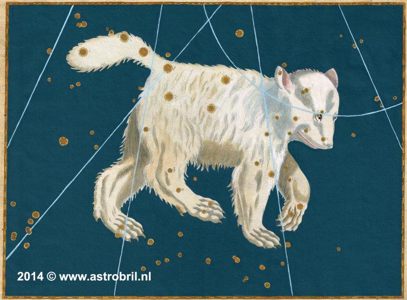 Plate 2 - Ursa Major