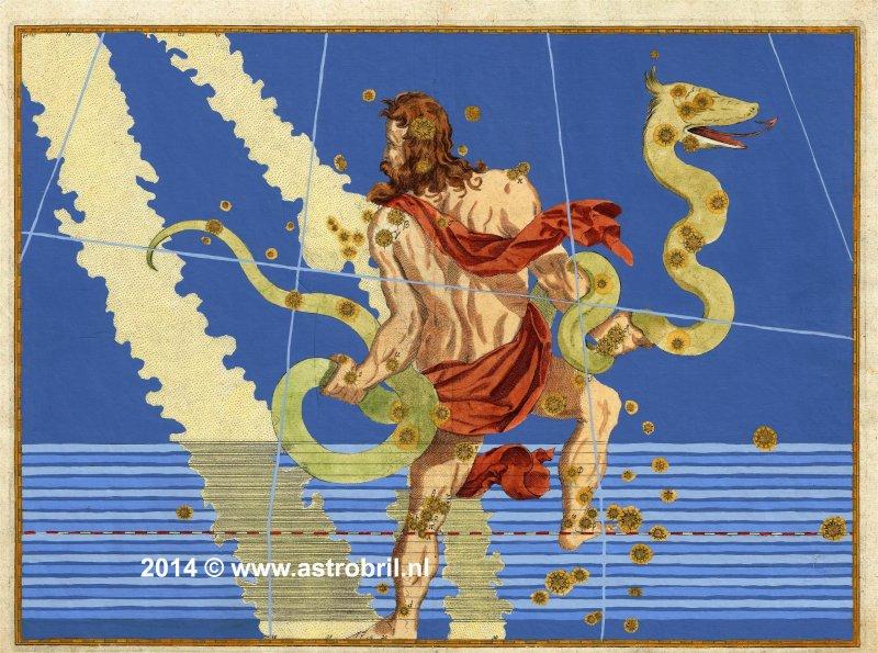 Plate 13 - Serpentarius