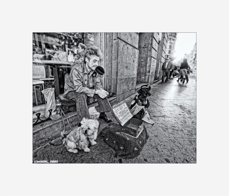 Madrid - Dogs and Beggar