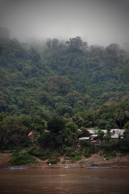 Misty Mekong Morning