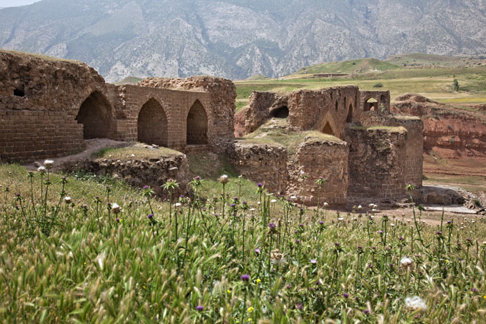 Ancient Gavmishan Bridge