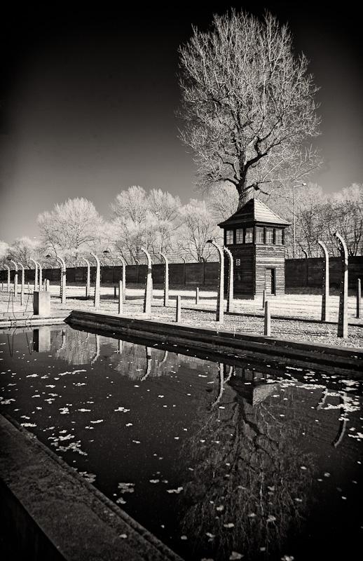 Auschwitz One 6