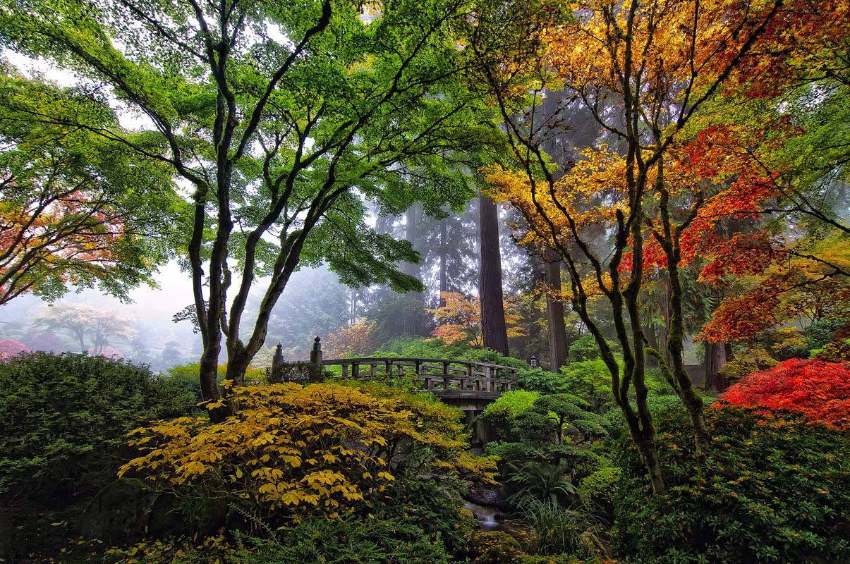Japanese Gardens In Portland Oregon Beautiful Nature Pinterest