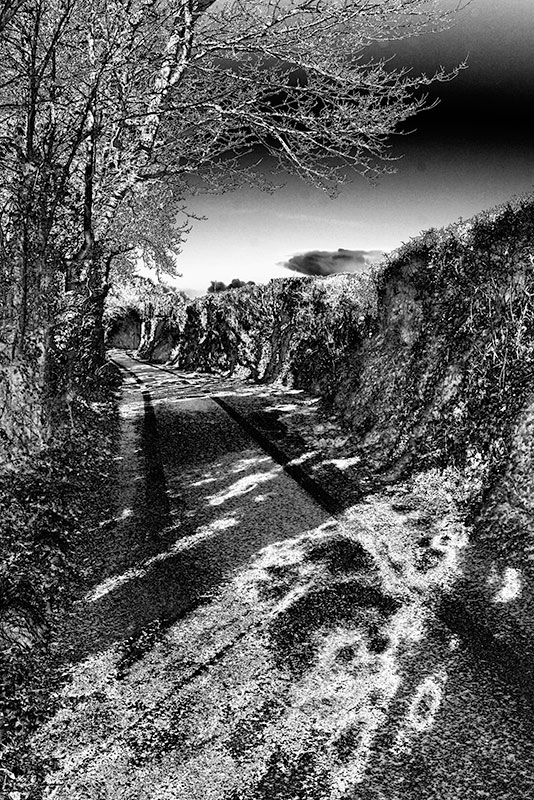 CRW_01067C.jpg Wearde Quay Saltash - © A Santillo 2006