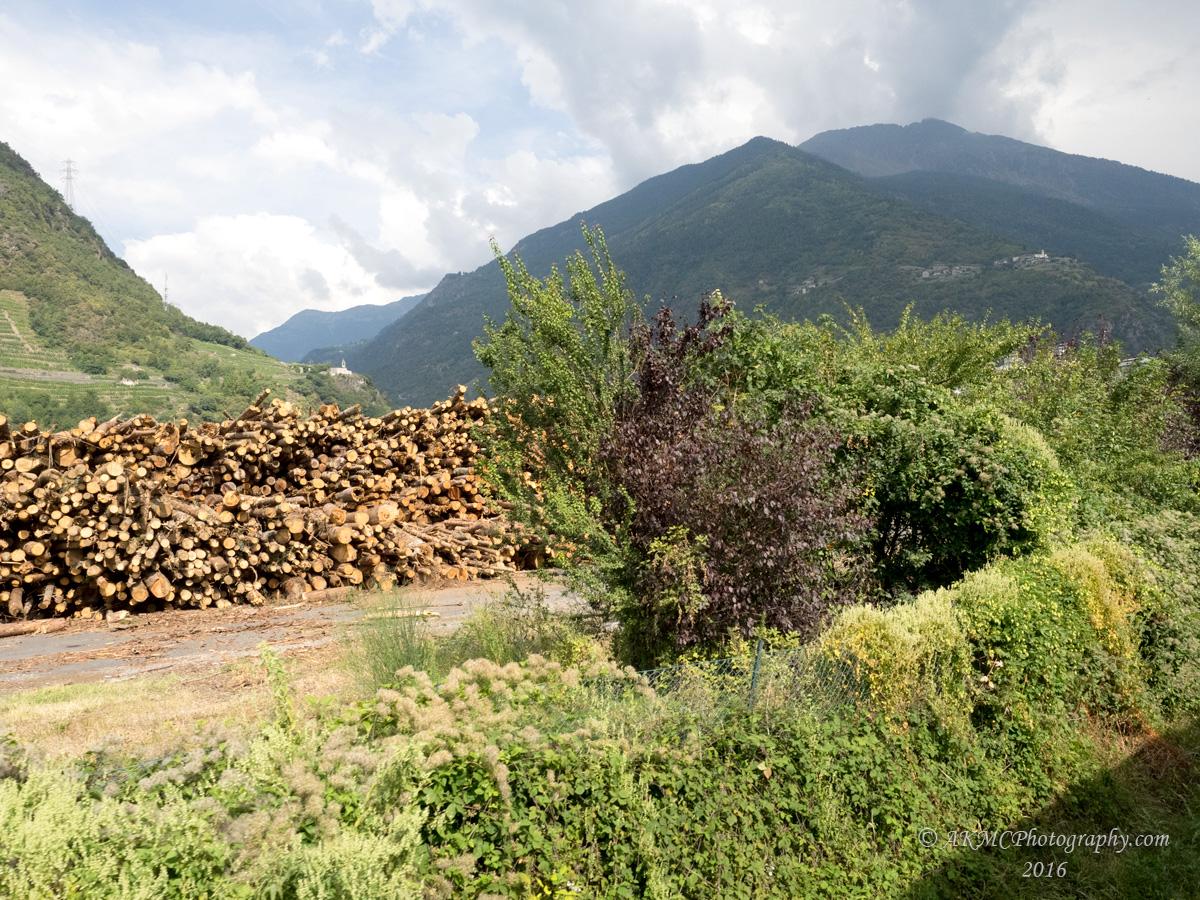 20160910_021403 The Lumber Yard (Sat 10 Sep, 12:03)