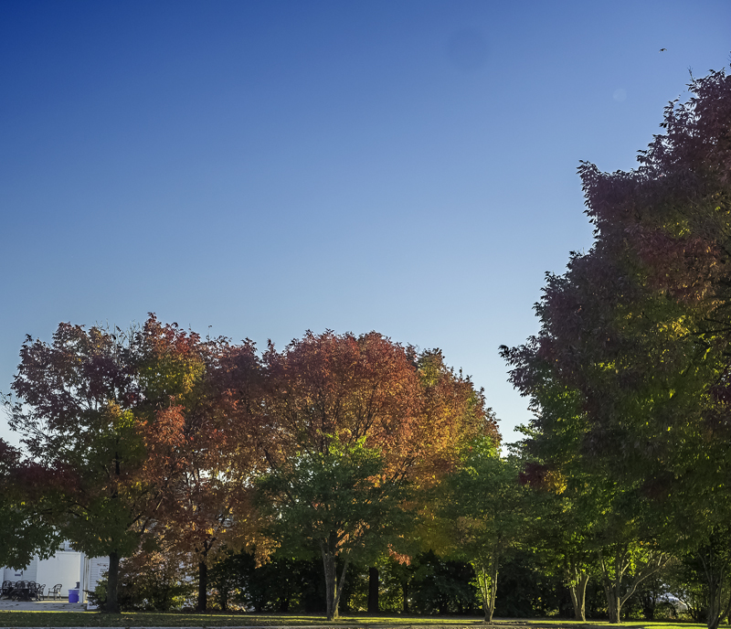 A touch of Fall on the Sheboygan, WI waterfront.