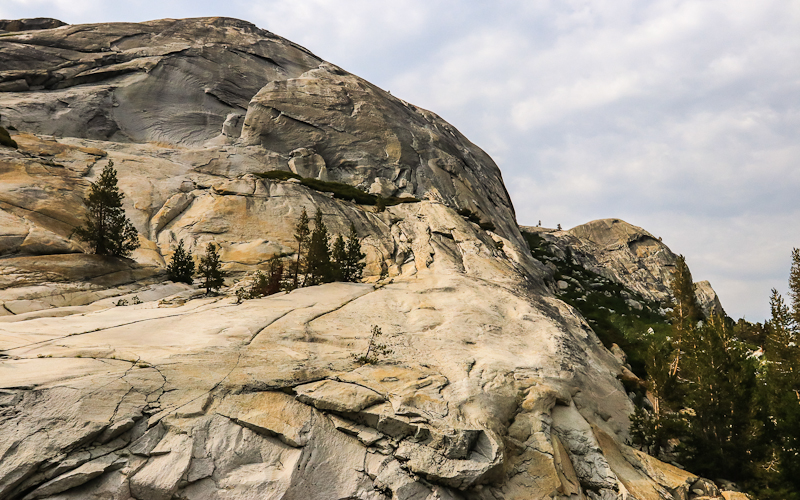 Granite outcropping along the Tioga Road in Yosemite National Park
