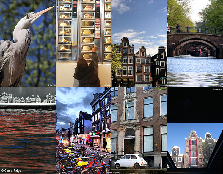 amsterdam-glimpses.jpg