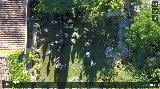 Aerial views: Pre-ceremony champagne