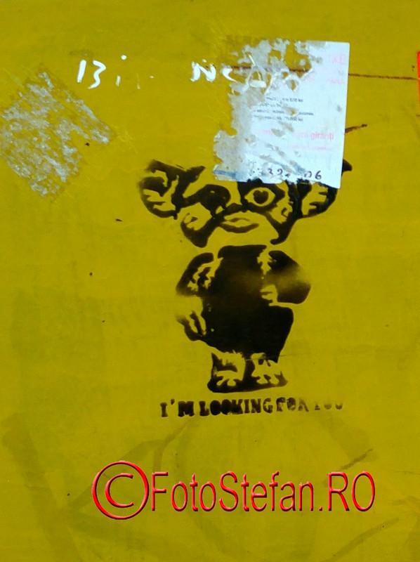 graffiti-timisoara-romania.jpg