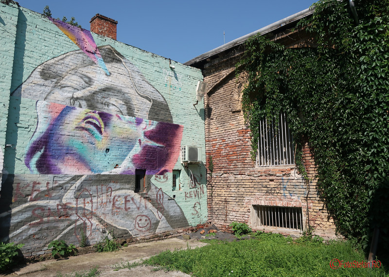 graffiti-timisoara-romania_15.JPG
