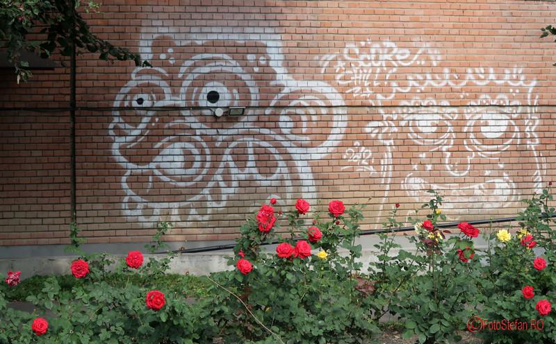 graffiti-timisoara-romania_28.JPG