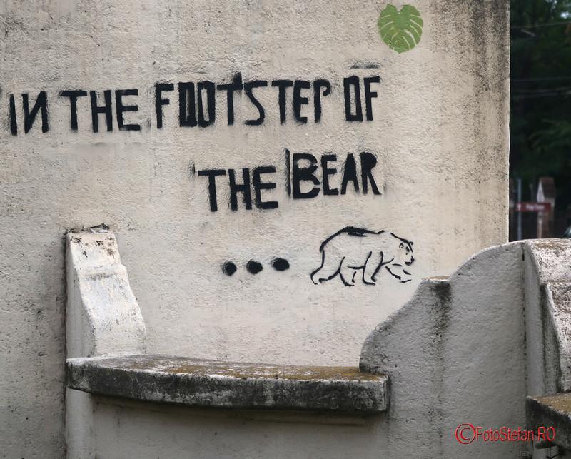 graffiti-timisoara-romania_40.JPG